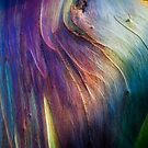 The Tree Bark Collection # 17 - The Magic Tree by Philip Johnson