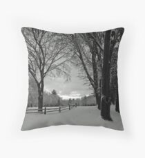 Tree tunnel Throw Pillow