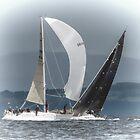 Wind in my Sails Largs Scotland by Lynn Bolt