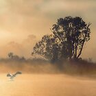 Waking up by Jessy Willemse
