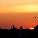 Sunset Silhouettes by phil decocco