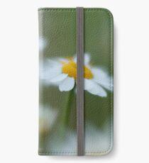 Daisy Dream iPhone Wallet/Case/Skin