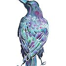 Raven - Watercolour  by Jezhawk