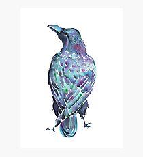 Raven - Watercolour  Photographic Print