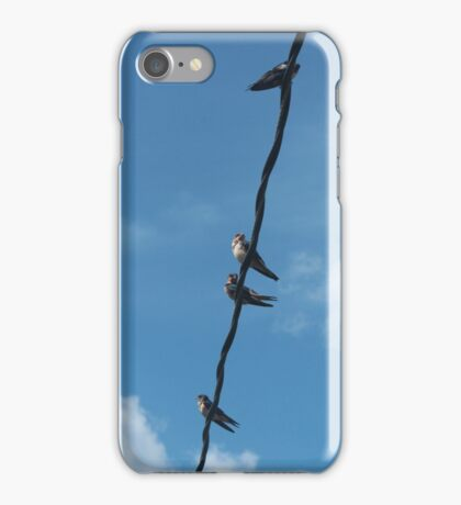 Swallows iPhone Case/Skin