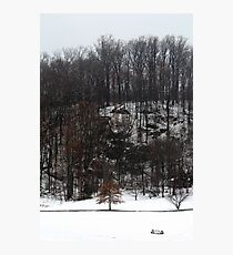 Spring Snowstorm Photographic Print