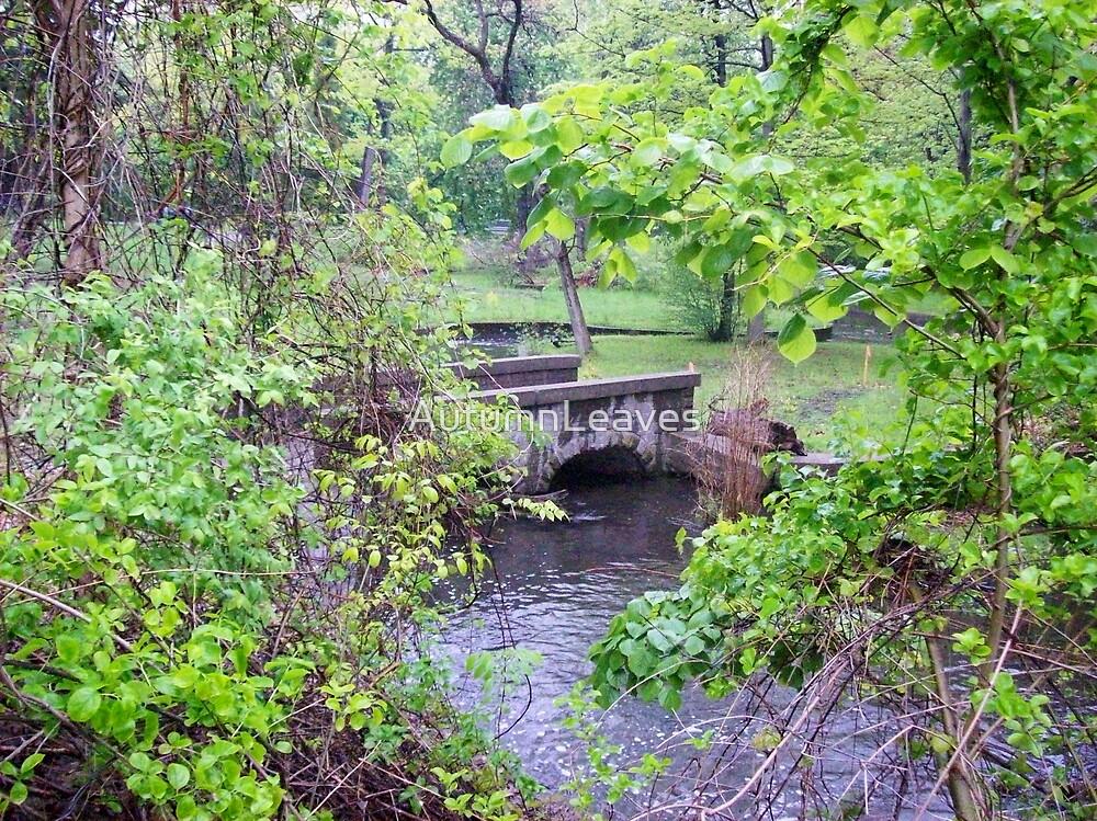 Bridge by AutumnLeaves