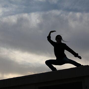 Traditional Wushu Kung Fu by Jairoguarin