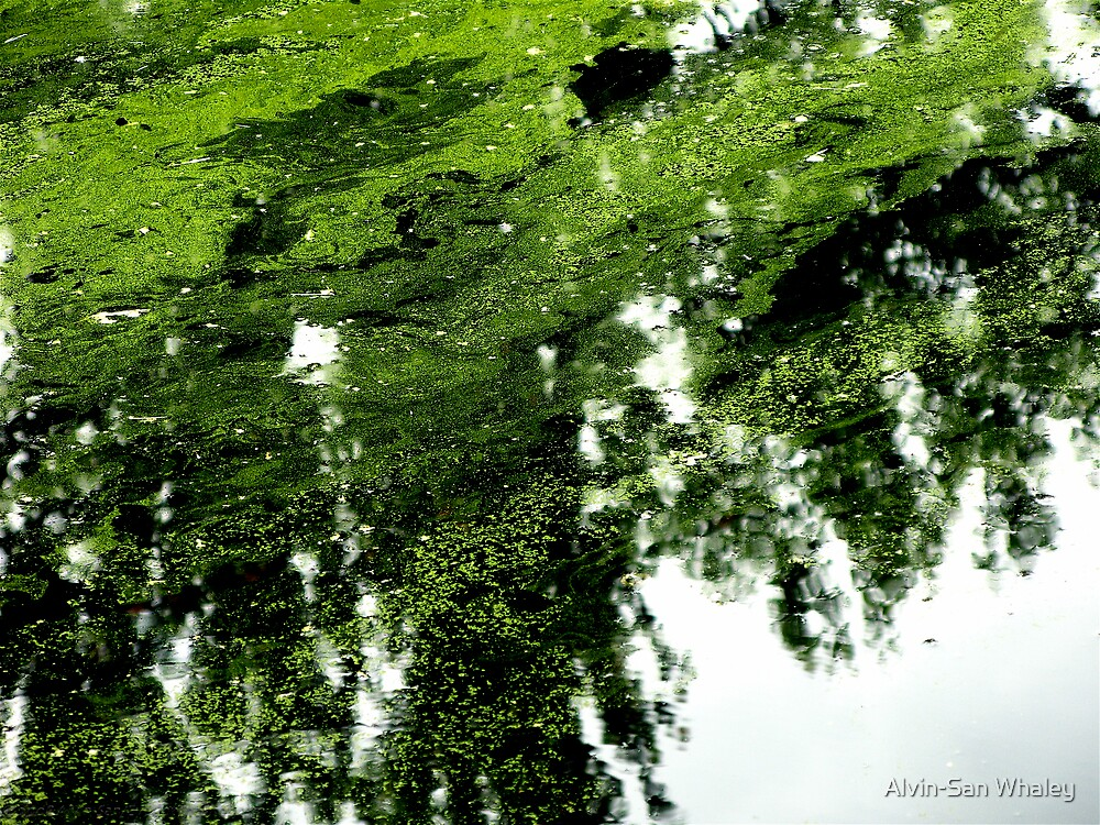 GreenWater by Alvin-San Whaley