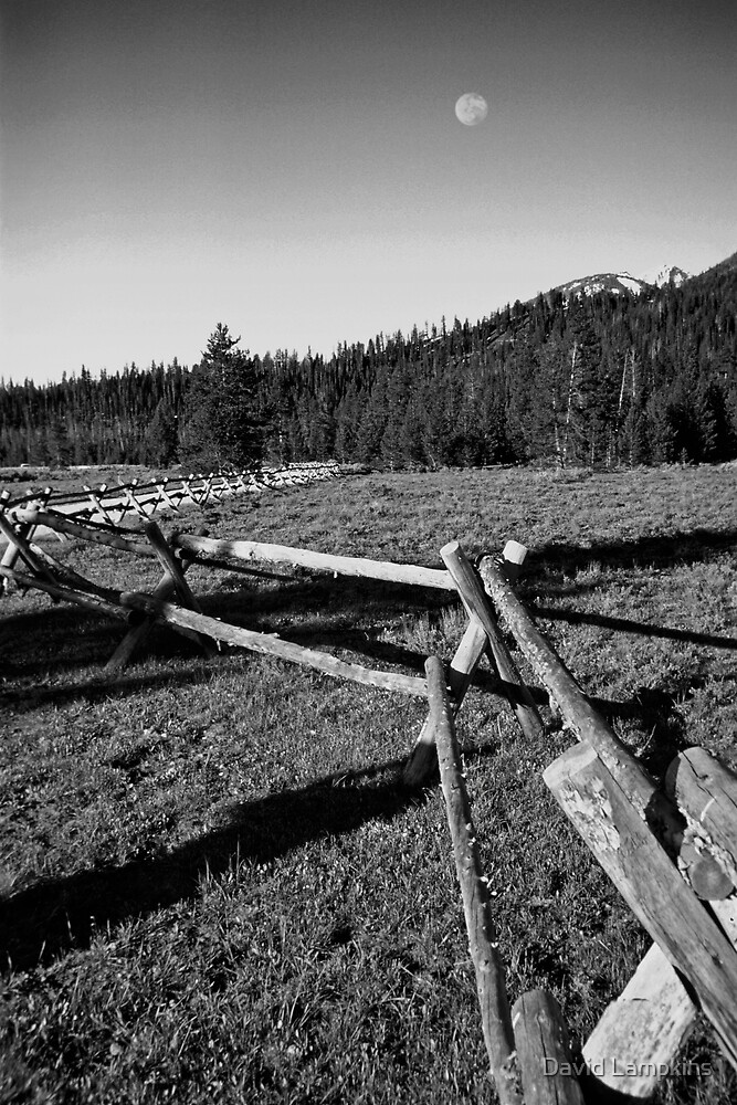 Split Rail Fence by David Lampkins