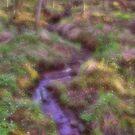 Little creek by Annika Strömgren