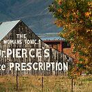 Dr. Pierce's Favorite Medicine, The Woman's Tonic by Ryan Houston