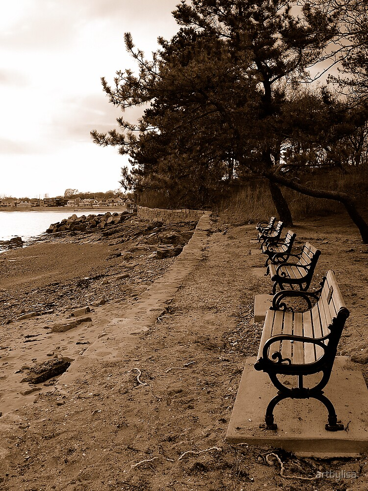 Bench with a View by artbylisa
