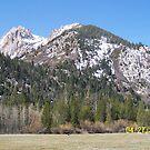 High Sierras by senseirduffy