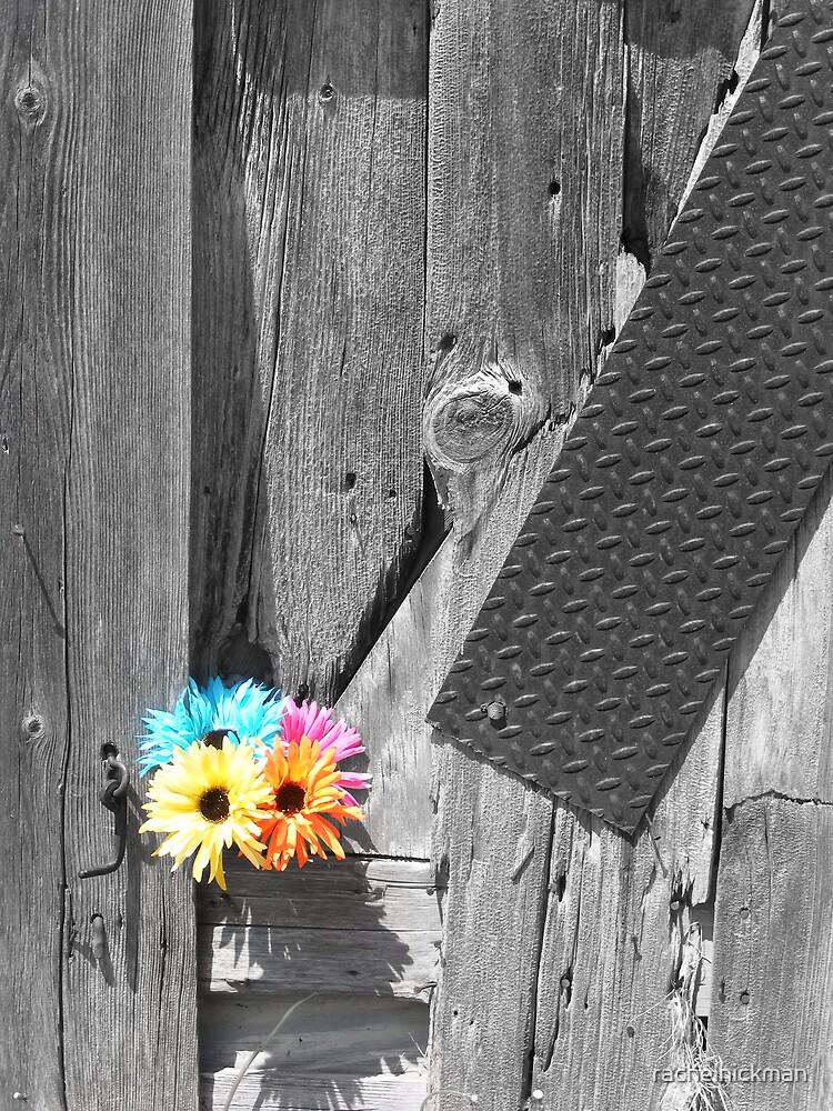 Flowers in Barn Wall by rachelhickman