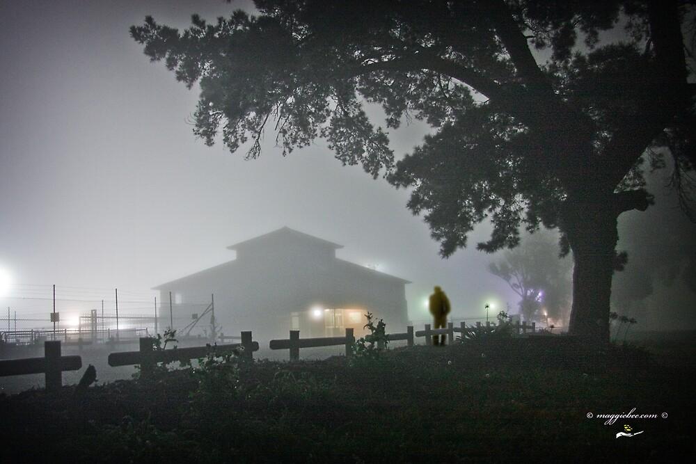 Stockyards in the Mist by Maggiebee