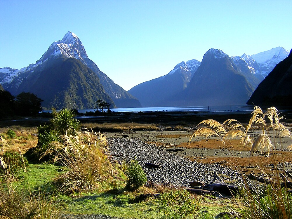 The one and only Milford Sound. by wmolland