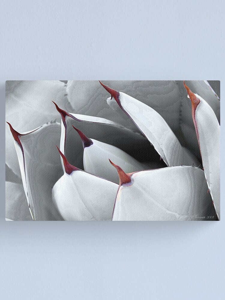 Alternate view of Points of View Canvas Print