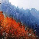 Little Cottonwood Canyon by Ryan Houston