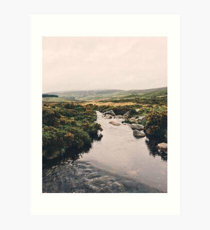 Irish Wanderings Art Print