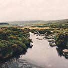 Irish Wanderings by Fiona Christensen