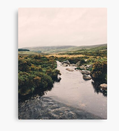 Irish Wanderings Canvas Print