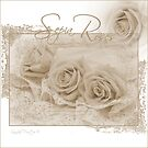Three Sepia Roses  by Sandra Foster