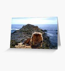 846-Stone Sea King Greeting Card