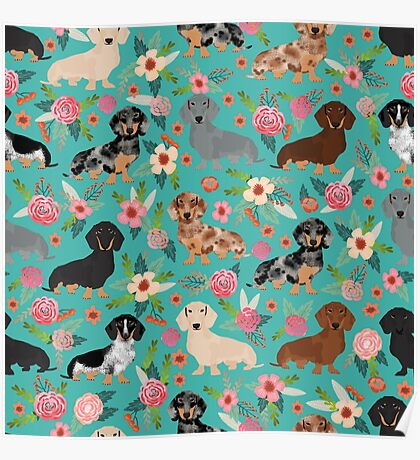 Dachshund doxie dachsie floral flowers dog breed gifts Poster