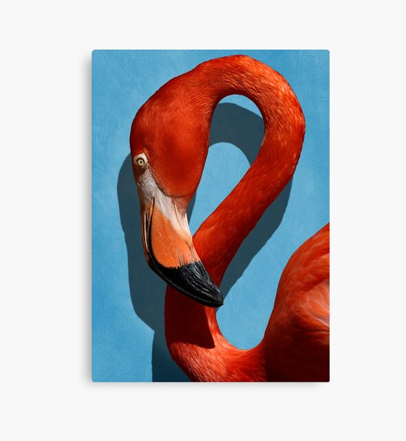 Studio Dalio - Orange Flamingo Profile on Blue Background Canvas Print