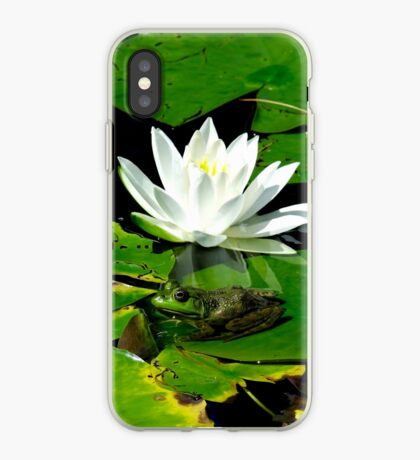 Basking in the reflection iPhone Case