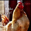 Wake Up! Rooster by Beth Brightman