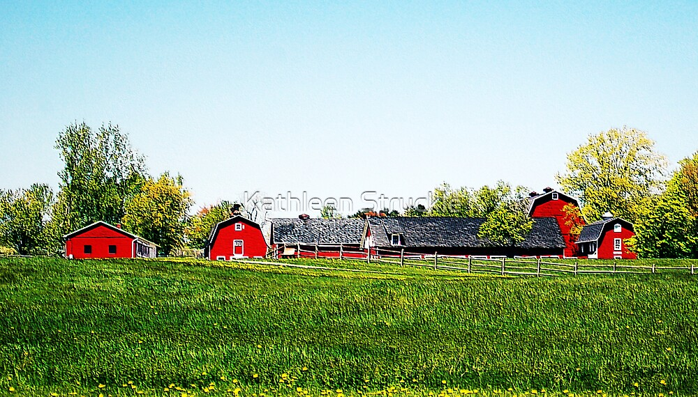 The Red Barns by Kathleen Struckle