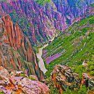 Gunnison River Blackcanyon Colorado by Walter Colvin