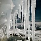 Ice Cave by Carole-Anne