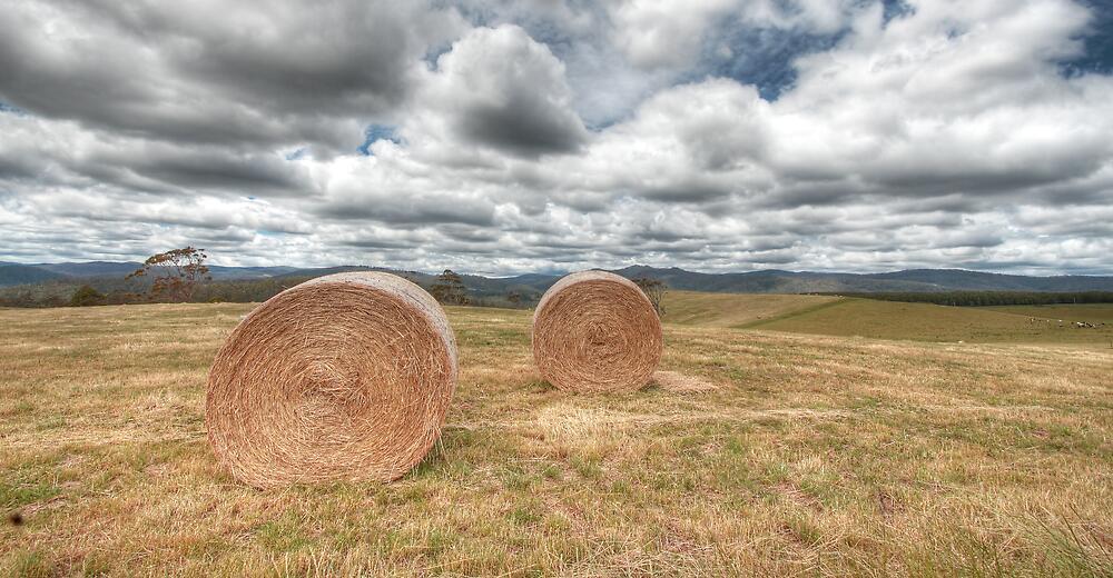 Hay Bales - Derby, Tasmania by Darren Post