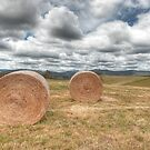 Hay Bales - Derby, Tasmania by Darren Post