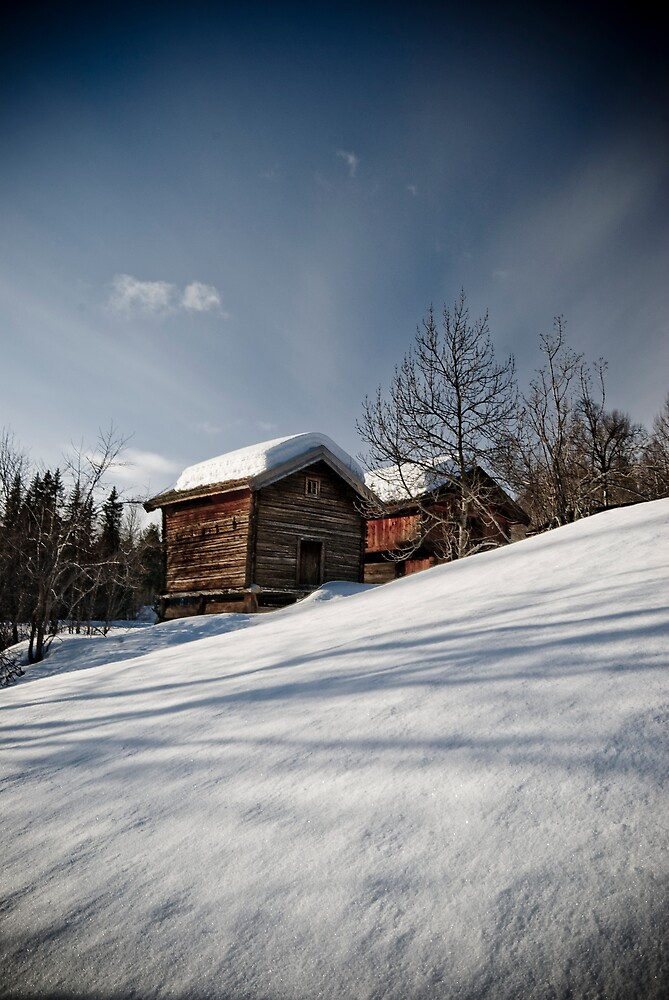The Cold House by Luke Tennant