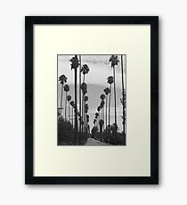 Vintage Black & White California Palm Trees Photo Framed Print
