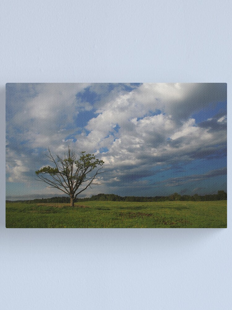 Alternate view of Oak in the spring Canvas Print
