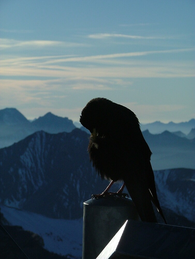 Switzerland by Clare Blackman