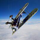 Flying Ace by John Dalkin