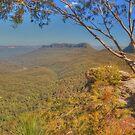 Mount Solitary by Michael Matthews