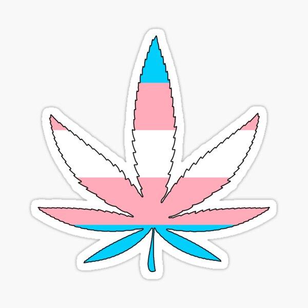 Weed - Transgender Flag Sticker