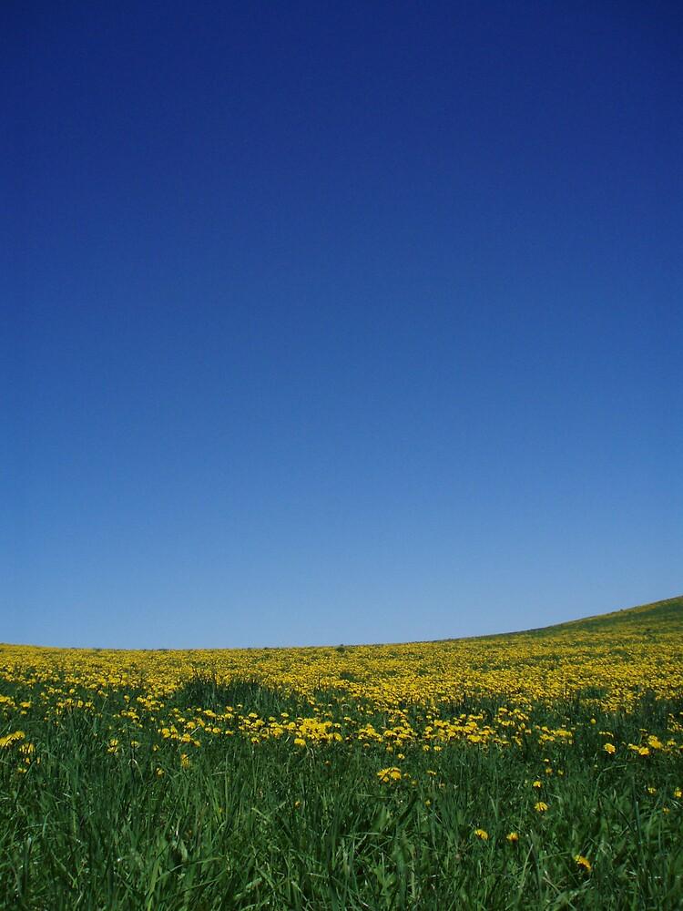 Sky Blue Sky by Ever So Kate