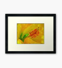Embrace me in your love Framed Print