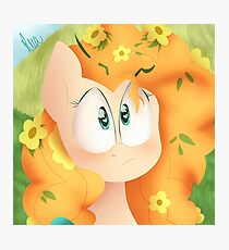 Pear butter - MLP Photographic Print