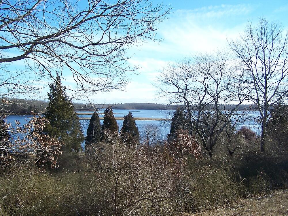 Slocum's River Reserve II by missliz
