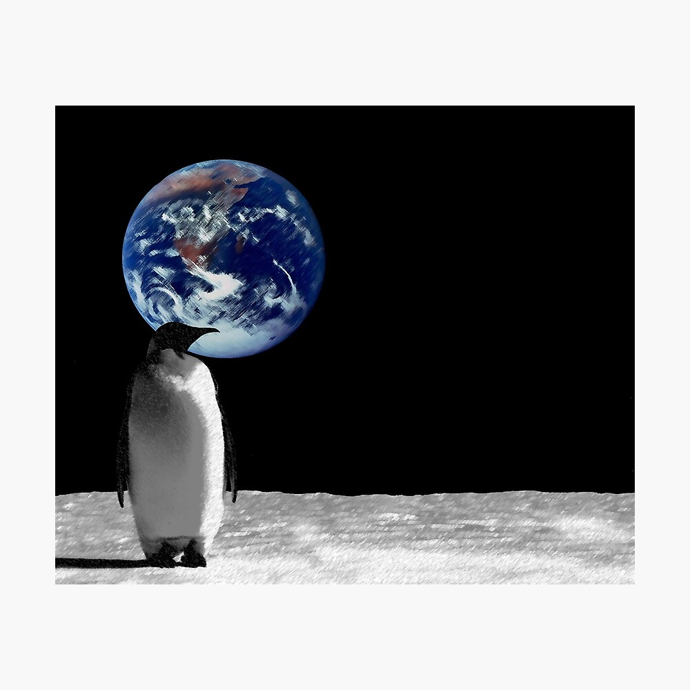 Penguins in High Places Photographic Print