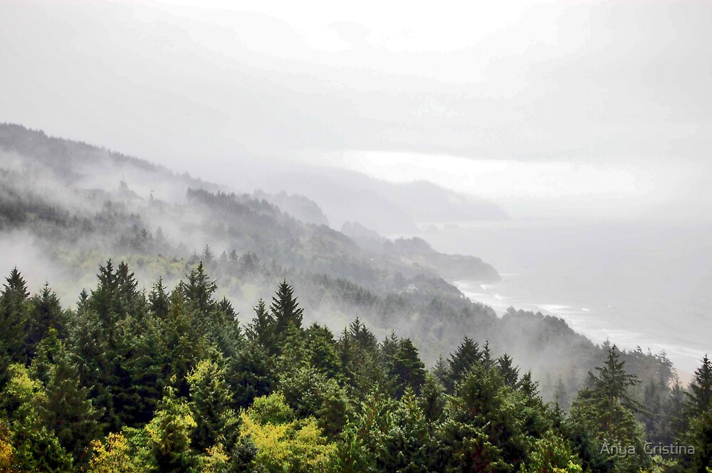 Misty Oregon Coast by Anya  Cristina